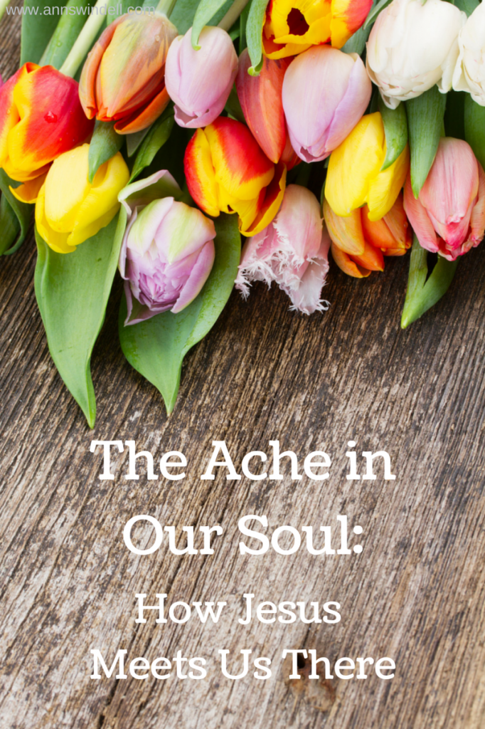 The Ache in Our Soul- How Jesus Meets Us There