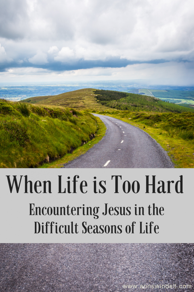 When life is too hard, Jesus will meet you there. More at www.annswindell.com