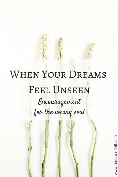 When Your Dreams Feel Unseen at www.annswindell.com